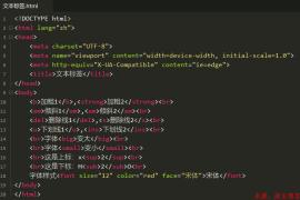 HTML5中常见的文本标签格式化