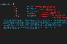 Centos7安装配置BIND主/从服务+缓存(DNS域名解析服务)