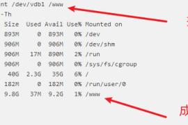 服务器卸载默认硬盘挂载目录/data修改为宝塔安装目录/www