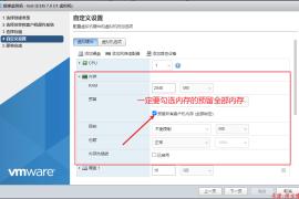 Vsphere/ESXI7.0设置网卡直通教程