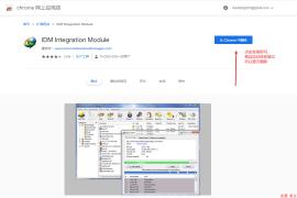 硬核解决IDM Integration Module无法集成到Chrome的问题