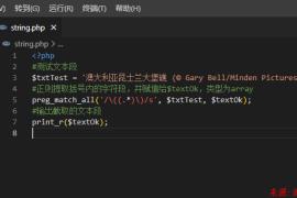 PHP使用正则获取一段文字中小括号内的内容段