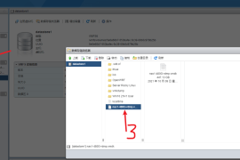 ESXI7.0几秒钟解决硬盘直通(RDM方式)